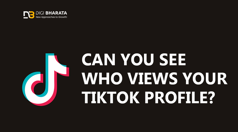 Can You See Who Views Your TikTok Profile?
